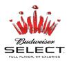 alc_budweiser_select